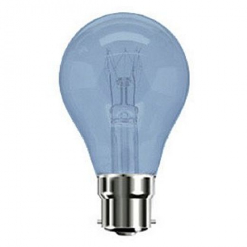 Incandescent Light Bulbs Incandescent Bulbs Craft Light