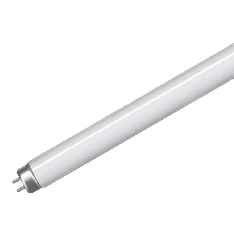 T5 High Output Fluorescent 21Watt Coolwhite