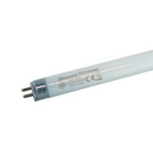 T5 High Output Fluorescent 24 Watt Cool white 549mm