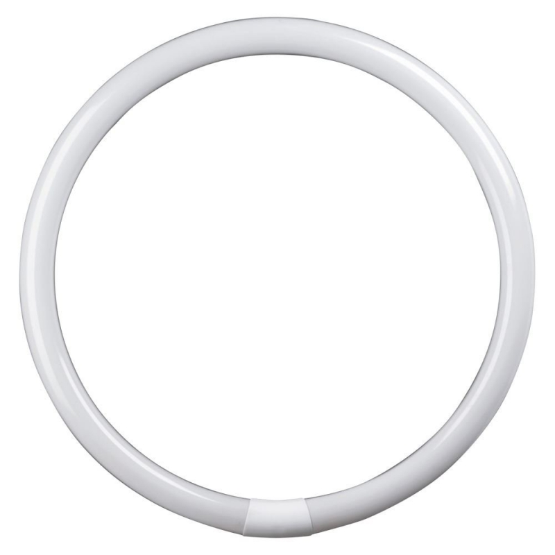 Circular Fluorescent Tube 22W Coolwhite 4 Pin
