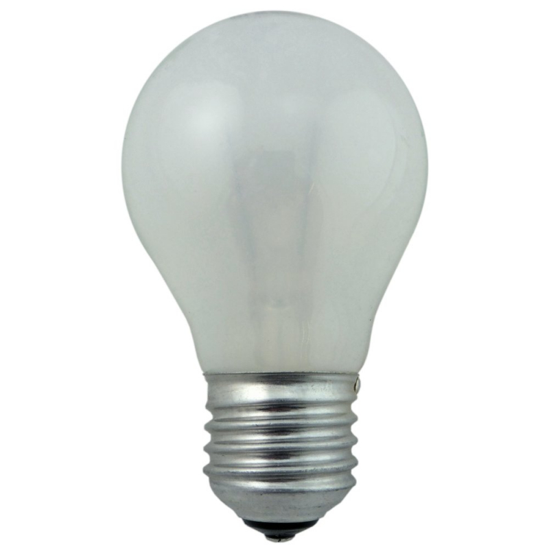 Rough Service 40W ES Pearl Light Bulb
