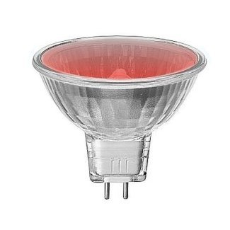 MR8 GU4 Halogen 20Watt Red Dichroic Lamp